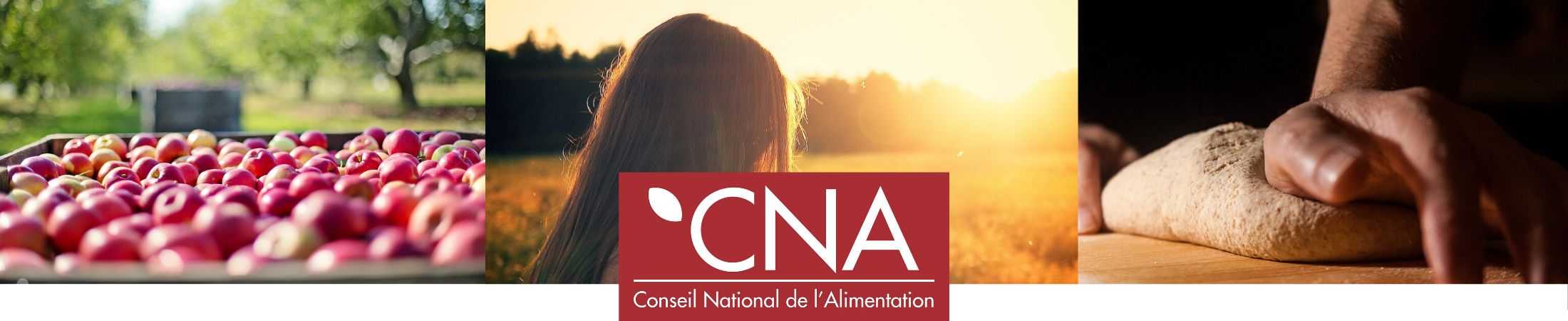 Conseil National de l'Alimentation